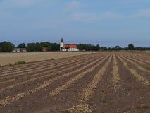 Un campo de la cebolla en Smedby en Oland Imagen de archivo