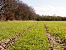 Un campo del ` s dell'agricoltore all'inizio della primavera Immagine Stock