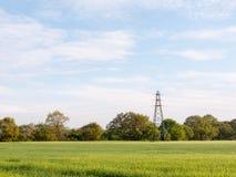 Un campo dell'azienda agricola fuori su un chiaro piacevole fertile splendido di giorno soleggiato lontano Fotografia Stock