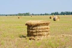 Un campo dell'azienda agricola nella campagna ha riempito di balle di fieno Fotografie Stock Libere da Diritti