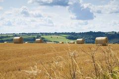 Un campo di Straw Bales Immagini Stock