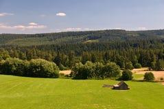 Un campo ed alcuni vecchi cottage nelle alpi svizzere Fotografia Stock Libera da Diritti
