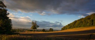 Un campo en el campo inglés es encendido para arriba por la luz de la puesta del sol imagen de archivo