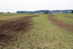 Un campo fertilizzato con concime Fotografia Stock