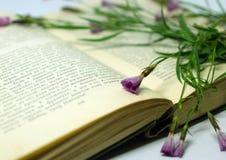 Un campo florece en un libro abierto Todavía vida con un libro abierto de Honore de Balzac Foto de archivo libre de regalías