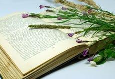 Un campo florece en un libro abierto Todavía vida con un libro abierto de Honore de Balzac Foto de archivo
