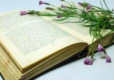 Un campo florece en un libro abierto Todavía vida con un libro abierto de Honore de Balzac Fotografía de archivo libre de regalías