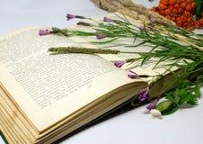 Un campo florece y raceme de la baya de serbal en un libro abierto Fotografía de archivo