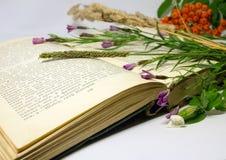 Un campo florece y raceme de la baya de serbal en un libro abierto Foto de archivo libre de regalías