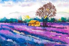 Un campo hermoso con la casa de la lavanda floreciente y de un granjero solo ilustración del vector