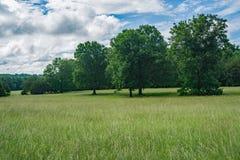 Un campo rural en un día de primavera hermoso Imágenes de archivo libres de regalías