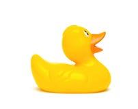 Un canard en caoutchouc jaune d'isolement sur un fond blanc Image libre de droits