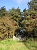 Un cancello delle cinque barre nel legno immagini stock