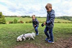 Un cane bianco piccolo di camminata di due ragazzi Fotografia Stock
