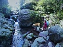 Un cane di A, della ragazza e un fiume Fotografia Stock Libera da Diritti
