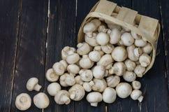 Un canestro dei funghi bianchi sparsi Funghi bianchi su un fondo nero Funghi prataioli Vista superiore Fotografie Stock Libere da Diritti