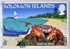 Un cangrejo del grapsid en un paraíso de la playa Imágenes de archivo libres de regalías