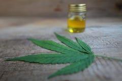 Un cannabis pousse des feuilles et une bouteille de table en bois d'huile de chanvre photographie stock libre de droits