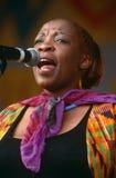 Un cantante che esegue ad un concerto in Sudafrica immagine stock libera da diritti