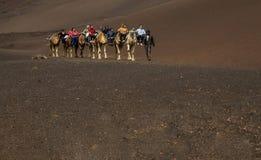Un caravan dei cammelli dei pacchetti con i cavalieri immagine stock