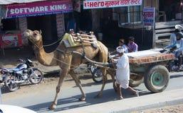 Un carretto del cammello in India fotografia stock libera da diritti