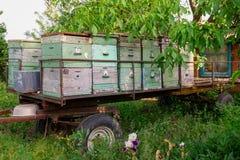 un carro con las colmenas en el jardín sin las abejas se van las colmenas vacías, abejas Fotos de archivo