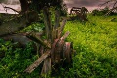 Un carro viejo miente derrelicto en el campo en una granja imagenes de archivo