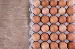Un cartón del pollo Eggs IV fotografía de archivo