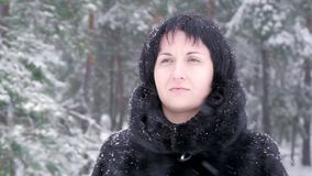 Un castana in una pelliccia sta in un parco e negli sguardi dell'inverno alla neve di caduta, al rallentatore video d archivio
