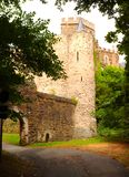 Un castello sul Reno in Germania fotografie stock