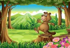 Un castor brun espiègle au-dessus du tronçon illustration stock