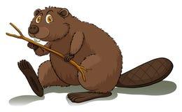 Un castor impaciente libre illustration