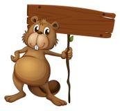 Un castoro che tiene un bordo del segno Fotografia Stock Libera da Diritti