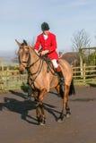 Un cavaliere inglese pronto per caccia di resistenza Fotografia Stock Libera da Diritti