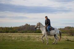 Un cavaliere su un cavallo bianco nel campo immagini stock libere da diritti