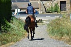Un cavaliere in un vicolo con il suo cavallo marrone immagini stock