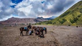 Un cavallerizzo al supporto Bromo del parco nazionale di Bromo-Tengger-Semeru in Indonesia Fotografia Stock