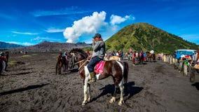 Un cavallerizzo al supporto Bromo del parco nazionale di Bromo-Tengger-Semeru in Indonesia Immagini Stock
