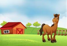 Un cavallo all'azienda agricola illustrazione vettoriale