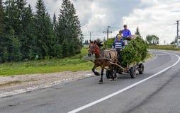 Un cavallo che tira un carretto immagini stock libere da diritti