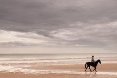 Un cavallo da equitazione dell'uomo Fotografia Stock