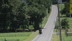 Un cavallo di Amish e una guida con errori lungo la strada sulla campagna archivi video