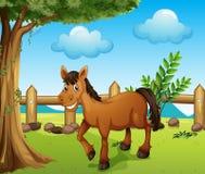 Un cavallo sotto l'albero illustrazione di stock