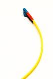 Un cavo del fiberchannel Fotografia Stock Libera da Diritti