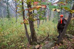 Un cazador en el bosque Fotografía de archivo libre de regalías
