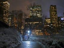 Un Central Park invernale sotto neve, NYC immagini stock libere da diritti