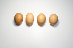 Un centro di quattro uova su fondo bianco Fotografie Stock Libere da Diritti