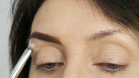 Un cepillo especial pinta las cejas con las sombras de la ceja Visión cercana Artista de maquillaje profesional que hace maquilla almacen de video