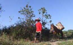 Un cercatore Ladu Ladu o sabbia Fotografia Stock Libera da Diritti