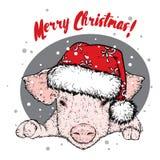Un cerdo en un sombrero del Año Nuevo Papá Noel _2 Ilustración del vector Pequeño cerdo dulce ` S del Año Nuevo y la Navidad stock de ilustración